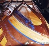 Bluthner 9 pieds 1935 concert 009